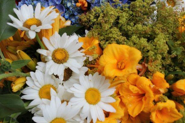 sweden_flowers